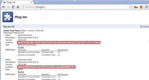 Dettagli Plugin nella Pagina Plugin in Chrome